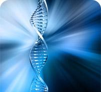 Géobiologie ADN